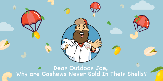 Graphic of Outdoor Joe's Mascot, Outdoor Joe reading a letter while nuts, mangos, and poison ivy rain down around him
